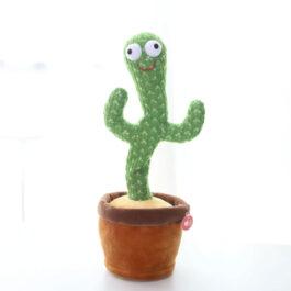 Cactus Bailarín que Repite lo que Dices